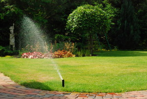 automatyczne nawadnianie gardenika